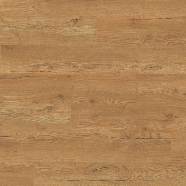 Egger Classic 12mm Olchon Oak Honey 4V Laminate Flooring EPL144