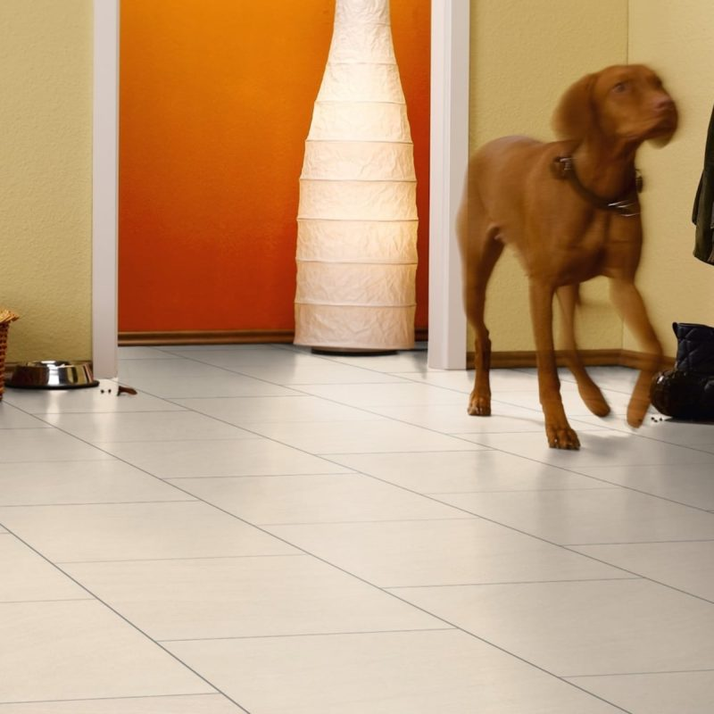 , Best Pet-Friendly Flooring, Flooring Surgeons